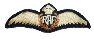 RAF Wings - Colour